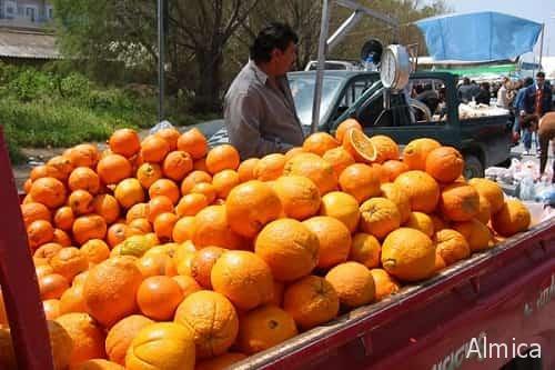 как купить вкусные апельсины